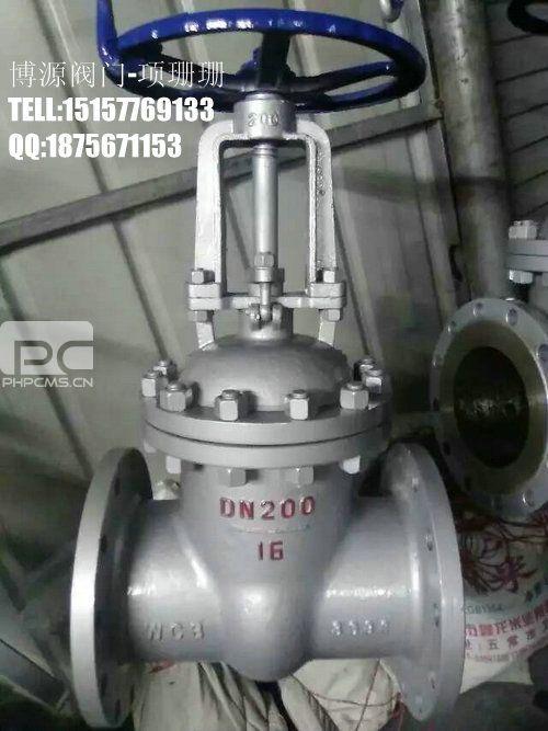 铸钢闸阀DN100